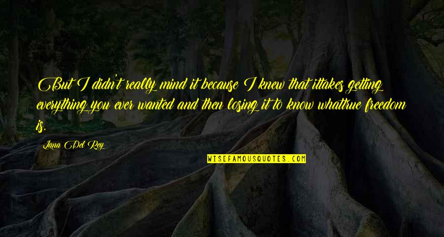 Mind Freedom Quotes By Lana Del Rey: But I didn't really mind it because I