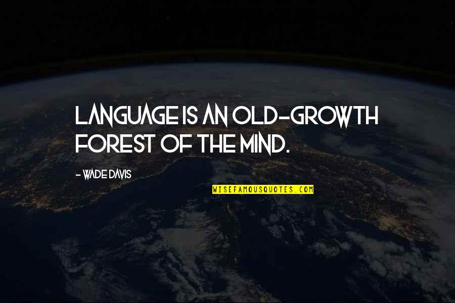 Mind Your Language Quotes By Wade Davis: Language is an old-growth forest of the mind.
