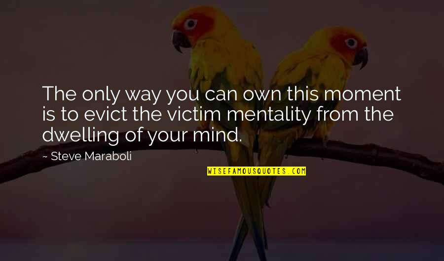 Mind Your Own Quotes By Steve Maraboli: The only way you can own this moment