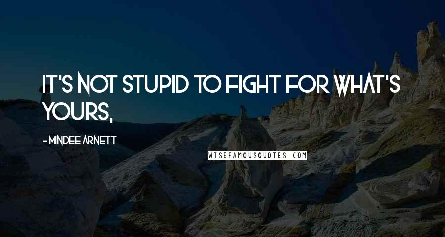 Mindee Arnett quotes: It's not stupid to fight for what's yours,