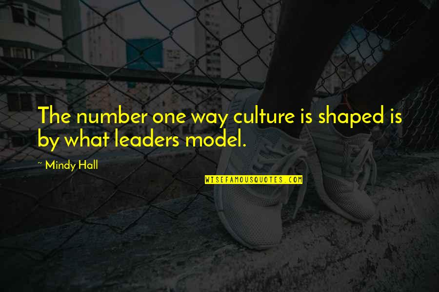 Mindy Quotes By Mindy Hall: The number one way culture is shaped is