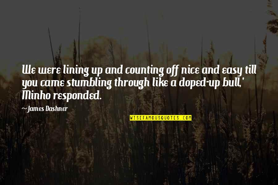 Minho Quotes By James Dashner: We were lining up and counting off nice
