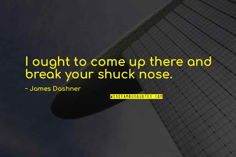 Minho Quotes By James Dashner: I ought to come up there and break