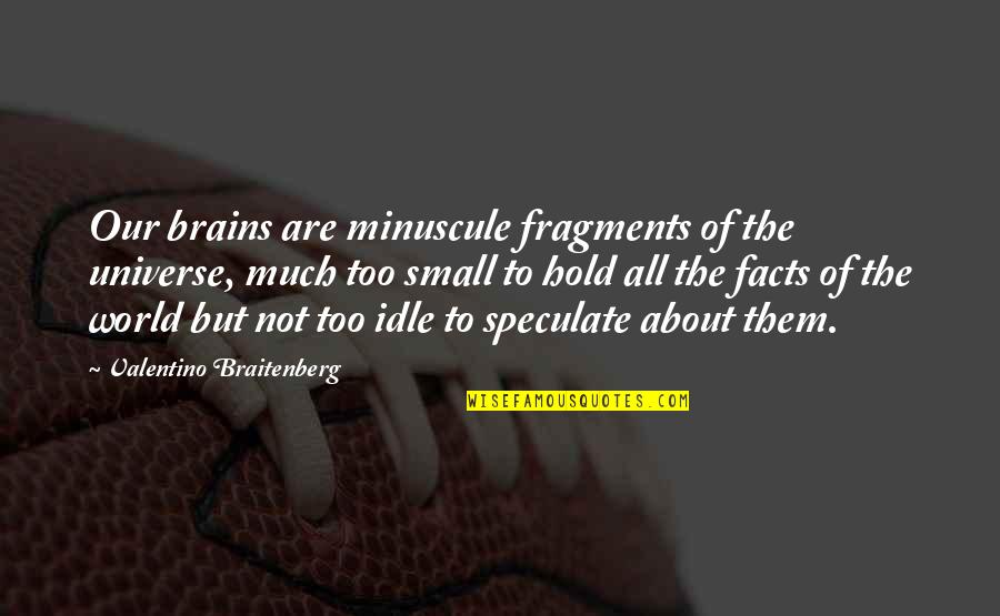 Minuscule Quotes By Valentino Braitenberg: Our brains are minuscule fragments of the universe,