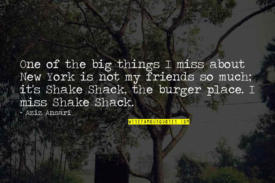 Miss U All Friends Quotes By Aziz Ansari: One of the big things I miss about