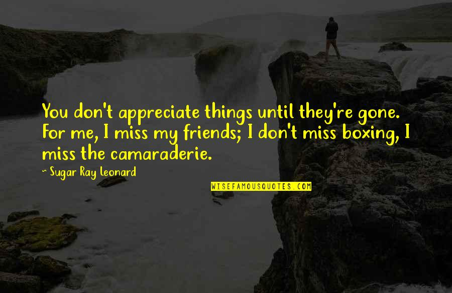 Miss U All Friends Quotes By Sugar Ray Leonard: You don't appreciate things until they're gone. For