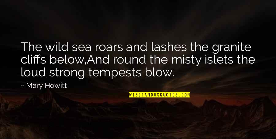 Misty Quotes By Mary Howitt: The wild sea roars and lashes the granite