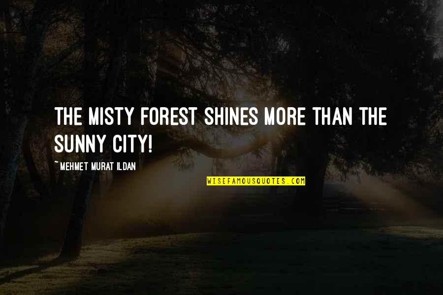 Misty Quotes By Mehmet Murat Ildan: The misty forest shines more than the sunny