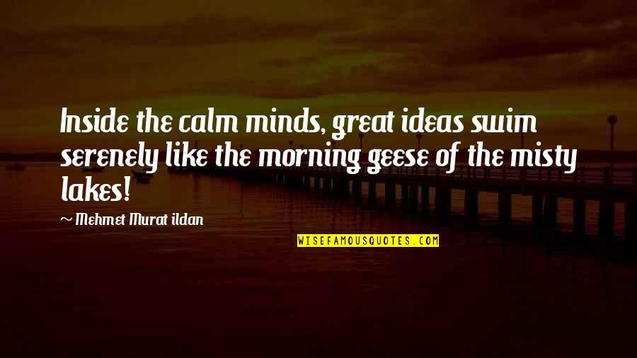 Misty Quotes By Mehmet Murat Ildan: Inside the calm minds, great ideas swim serenely