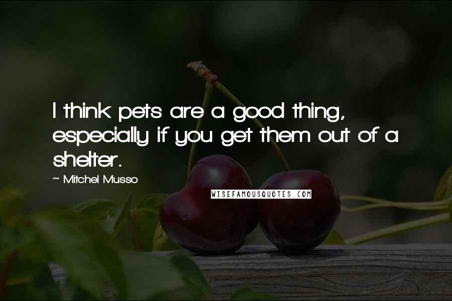 Mitchel Musso quotes: I think pets are a good thing, especially if you get them out of a shelter.