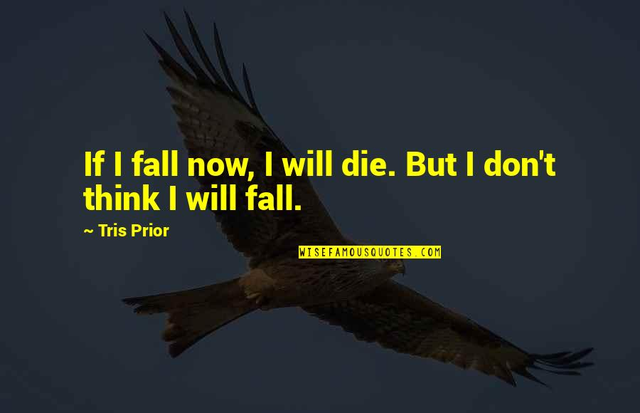 Mittelstand Quotes By Tris Prior: If I fall now, I will die. But
