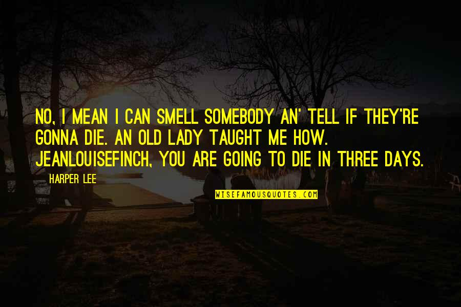Mockingbird To Kill Quotes By Harper Lee: No, I mean I can smell somebody an'