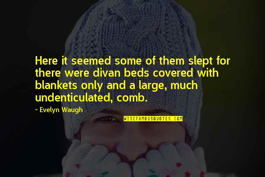 Moderator Quotes By Evelyn Waugh: Here it seemed some of them slept for