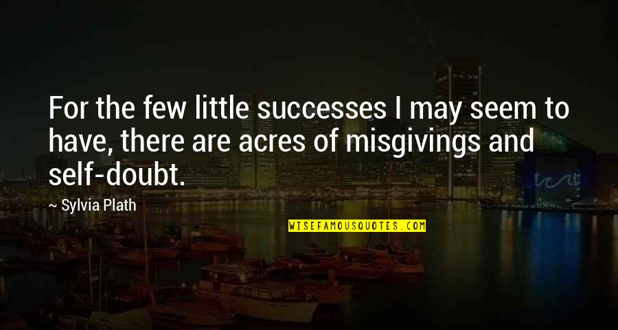 Moderator Quotes By Sylvia Plath: For the few little successes I may seem