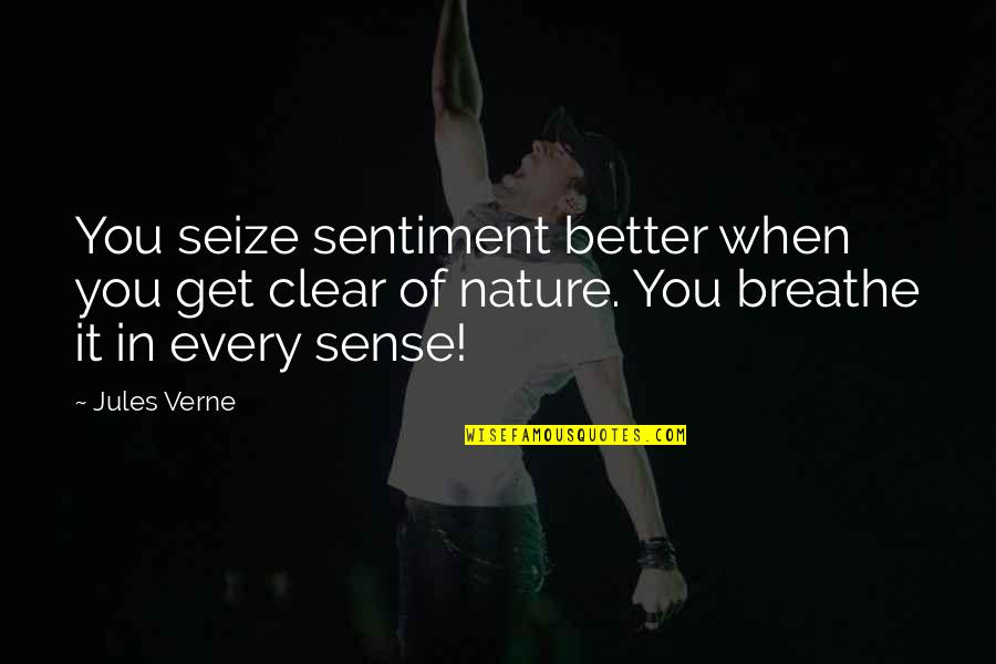 Moe Howard Quotes By Jules Verne: You seize sentiment better when you get clear
