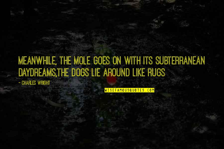 Mole Quotes By Charles Wright: Meanwhile, the mole goes on with its subterranean