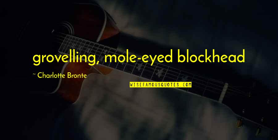 Mole Quotes By Charlotte Bronte: grovelling, mole-eyed blockhead