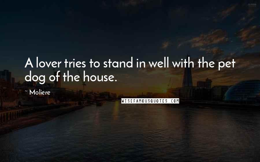 Moliere quotes: A lover tries to stand in well with the pet dog of the house.
