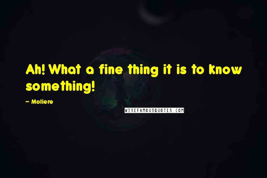 Moliere quotes: Ah! What a fine thing it is to know something!