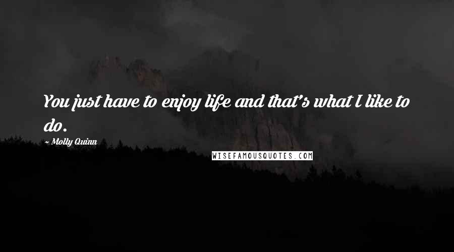 Molly Quinn quotes: You just have to enjoy life and that's what I like to do.