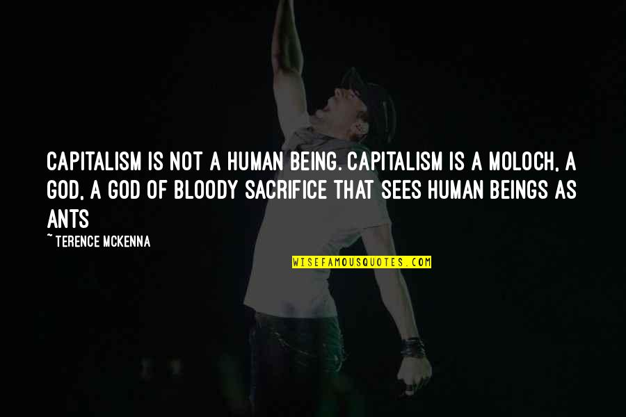 Moloch Quotes By Terence McKenna: Capitalism is not a human being. Capitalism is