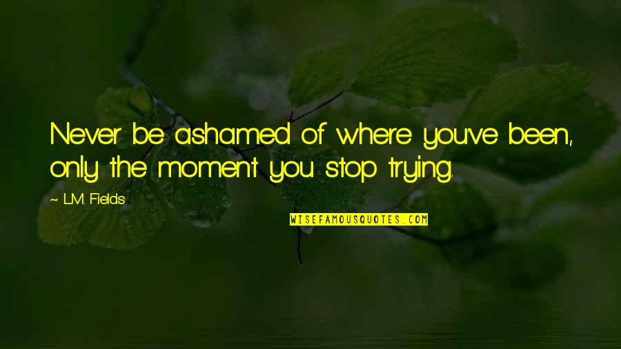 Moment Of Truth Quotes By L.M. Fields: Never be ashamed of where you've been, only