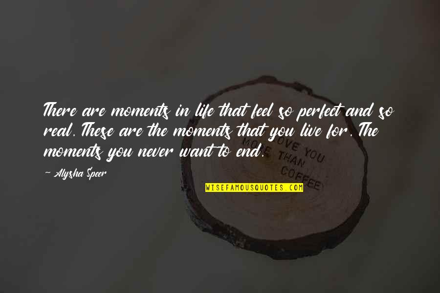 Moments You Live For Quotes By Alysha Speer: There are moments in life that feel so