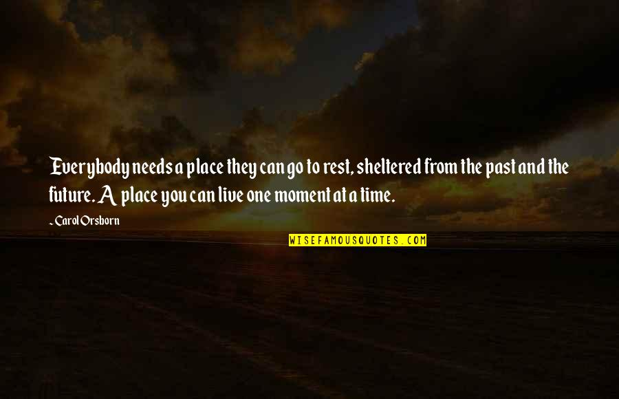 Moments You Live For Quotes By Carol Orsborn: Everybody needs a place they can go to