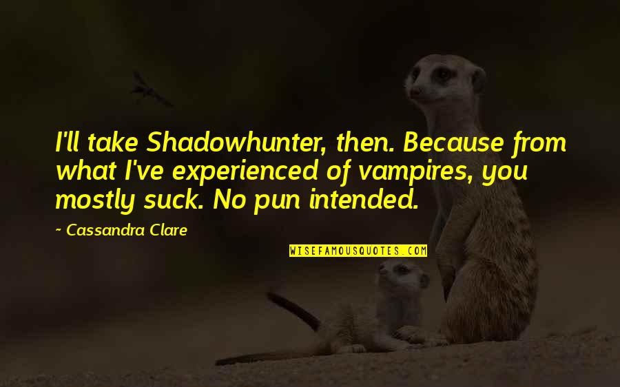 Mommy And Baby Quotes By Cassandra Clare: I'll take Shadowhunter, then. Because from what I've