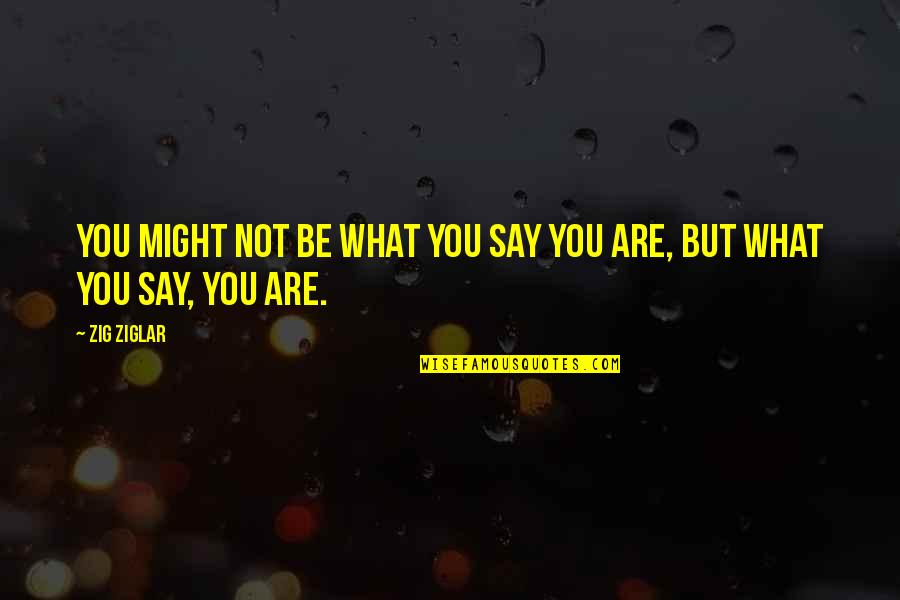 Mommy And Baby Quotes By Zig Ziglar: You might not be what you say you