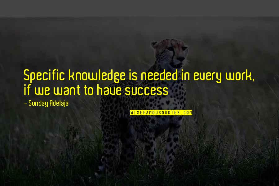 Money And Knowledge Quotes By Sunday Adelaja: Specific knowledge is needed in every work, if