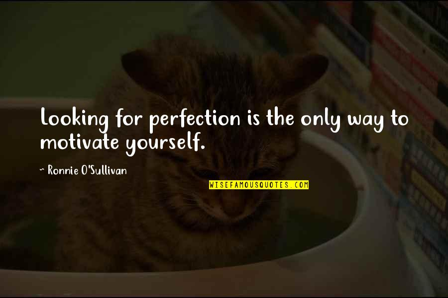 Money Clips Quotes By Ronnie O'Sullivan: Looking for perfection is the only way to