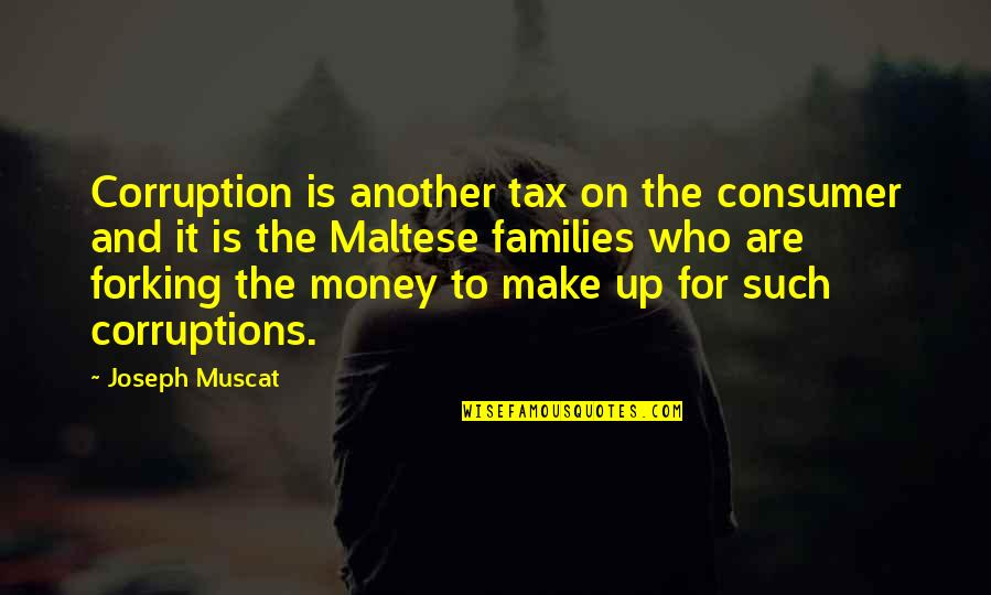 Money Corruption Quotes By Joseph Muscat: Corruption is another tax on the consumer and