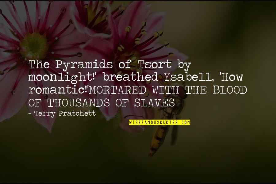 Money Is Not All That Matters In Life Quotes By Terry Pratchett: The Pyramids of Tsort by moonlight!' breathed Ysabell,