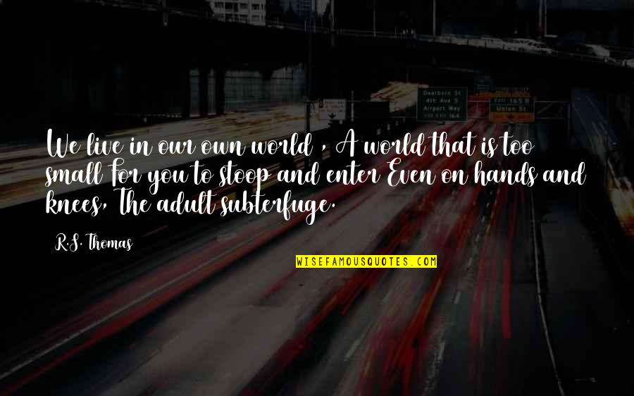 Monkey D Luffy Quotes By R.S. Thomas: We live in our own world , A