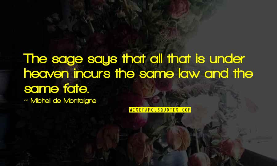 Montaigne Quotes By Michel De Montaigne: The sage says that all that is under