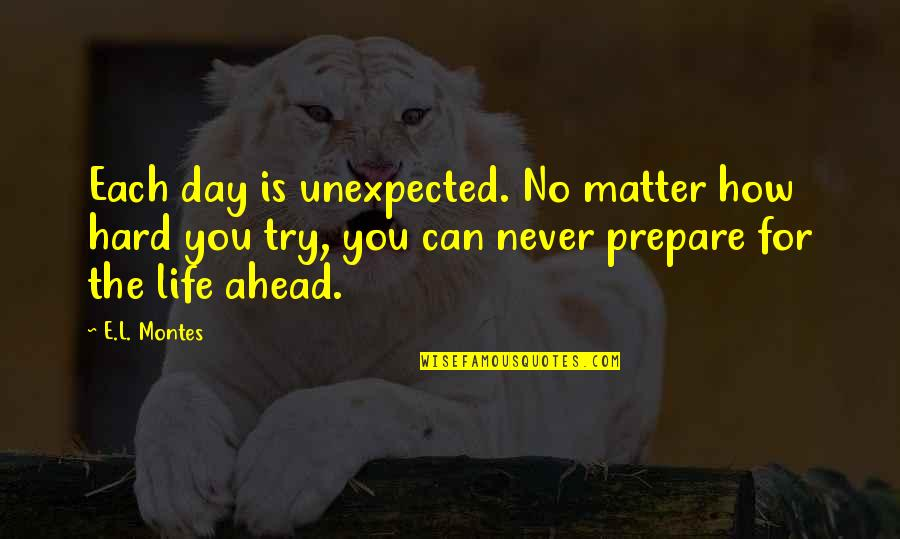 Montes Quotes By E.L. Montes: Each day is unexpected. No matter how hard