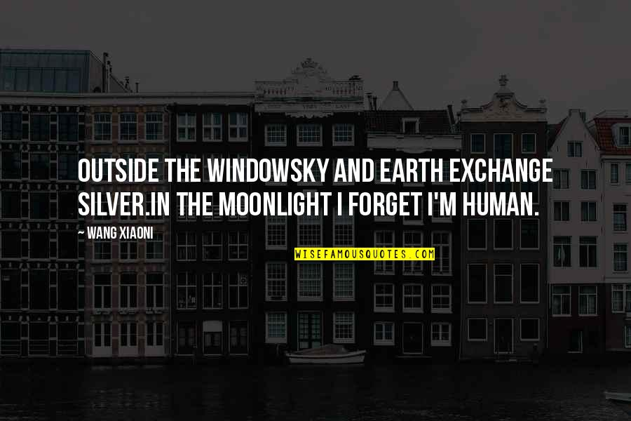 Moon And Sky Quotes By Wang Xiaoni: Outside the windowSky and earth exchange silver.In the