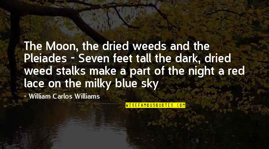 Moon And Sky Quotes By William Carlos Williams: The Moon, the dried weeds and the Pleiades
