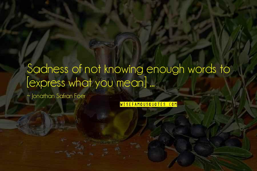 Moral Cautionary Quotes By Jonathan Safran Foer: Sadness of not knowing enough words to [express