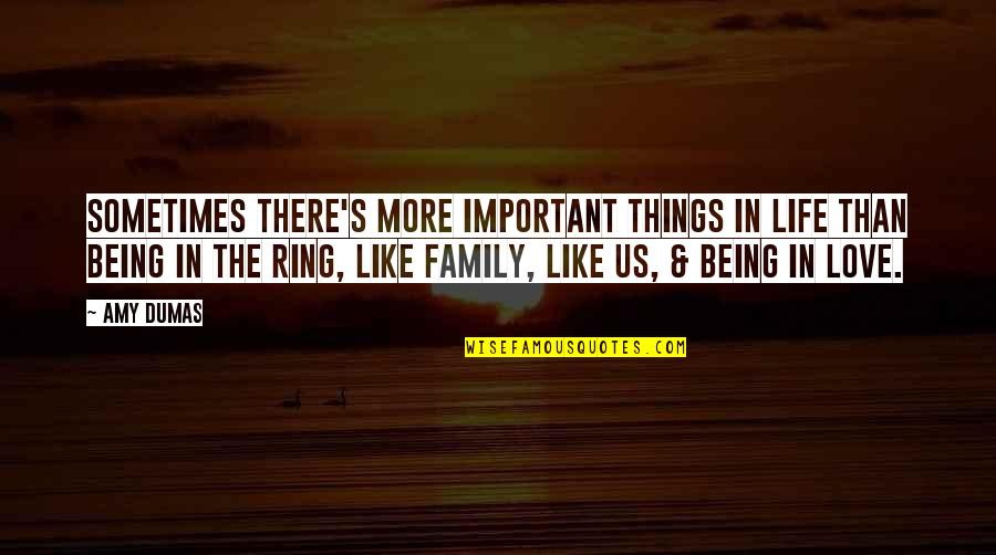 More Than Family Quotes By Amy Dumas: Sometimes there's more important things in life than