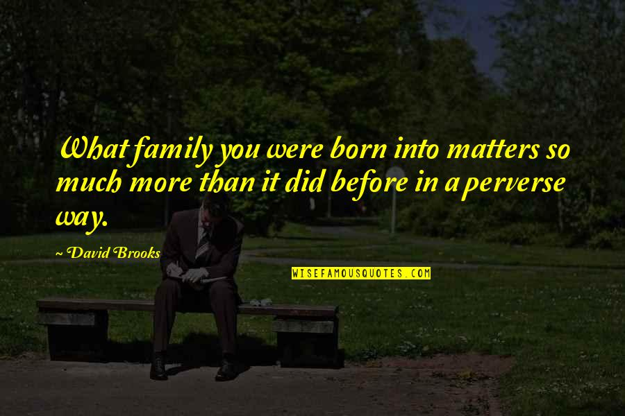 More Than Family Quotes By David Brooks: What family you were born into matters so