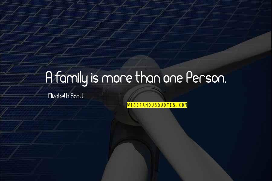More Than Family Quotes By Elizabeth Scott: A family is more than one Person.