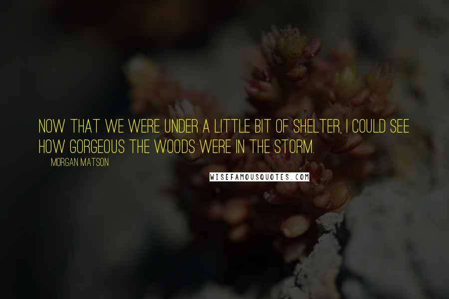 Morgan Matson quotes: Now that we were under a little bit of shelter, I could see how gorgeous the woods were in the storm.