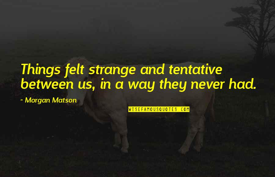 Morgan Matson Quotes By Morgan Matson: Things felt strange and tentative between us, in