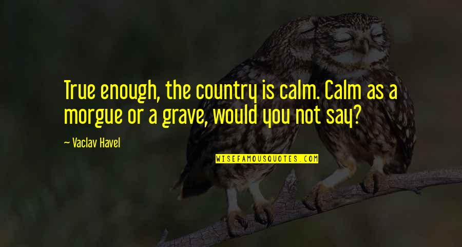 Morgue Quotes By Vaclav Havel: True enough, the country is calm. Calm as