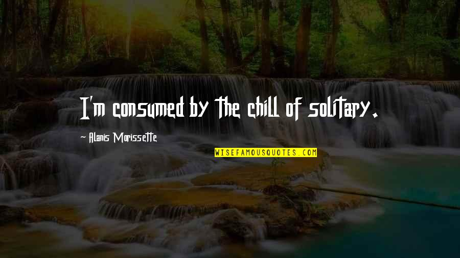 Morissette Quotes By Alanis Morissette: I'm consumed by the chill of solitary.
