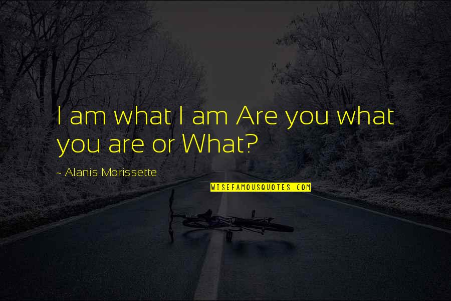 Morissette Quotes By Alanis Morissette: I am what I am Are you what