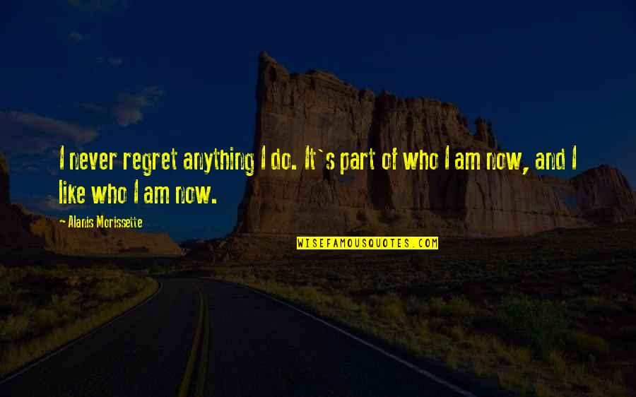 Morissette Quotes By Alanis Morissette: I never regret anything I do. It's part