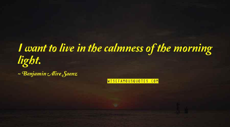 Morning Light Quotes By Benjamin Alire Saenz: I want to live in the calmness of